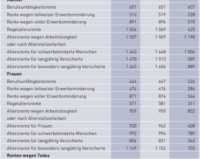 Deutsche Rentenversicherung- Jahresbericht 2017